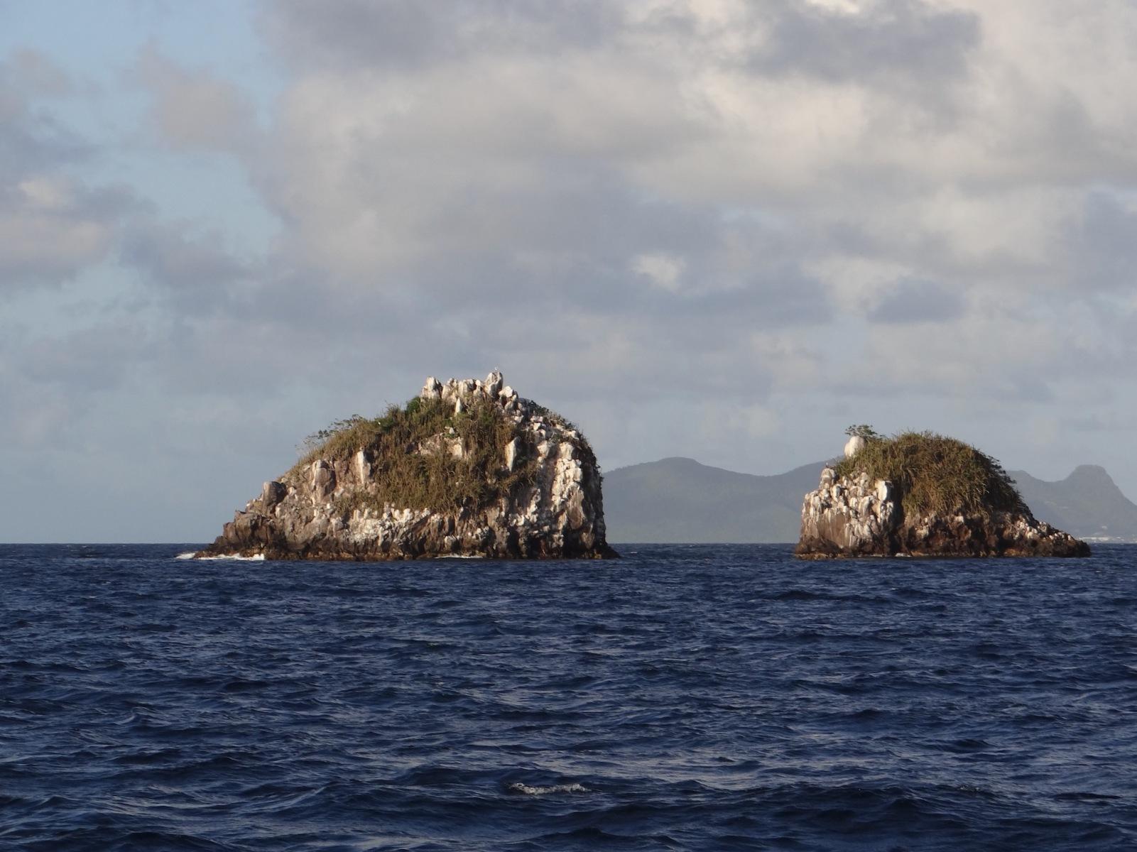 20200112_Karibik_12